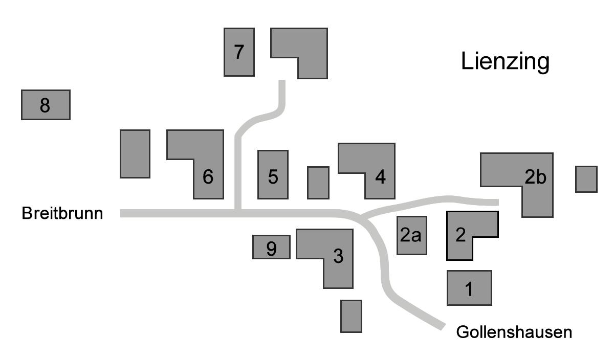 Anfahrt und Häuser in Lienzing