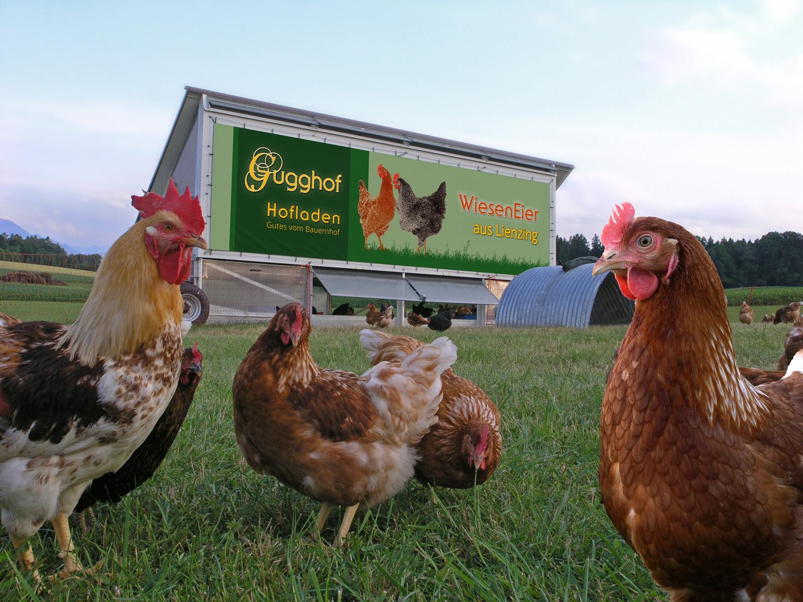 Das Hühnermobil | Gugghof